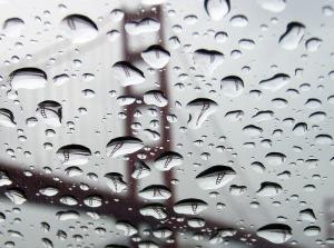 Pas né de la dernière pluie